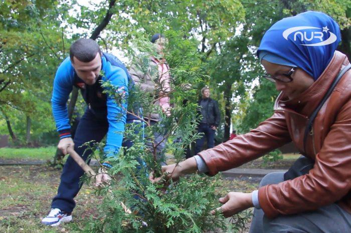Новые деревья - символ семейного благополучия