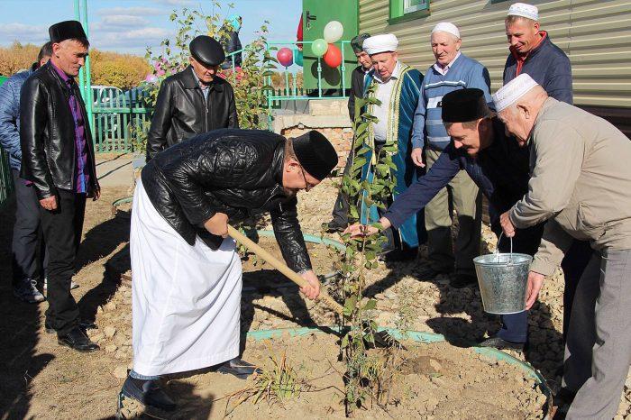 Рядом с мечетью посадили деревья